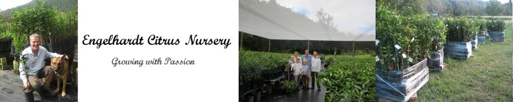 Engelhardt Citrus Nursery